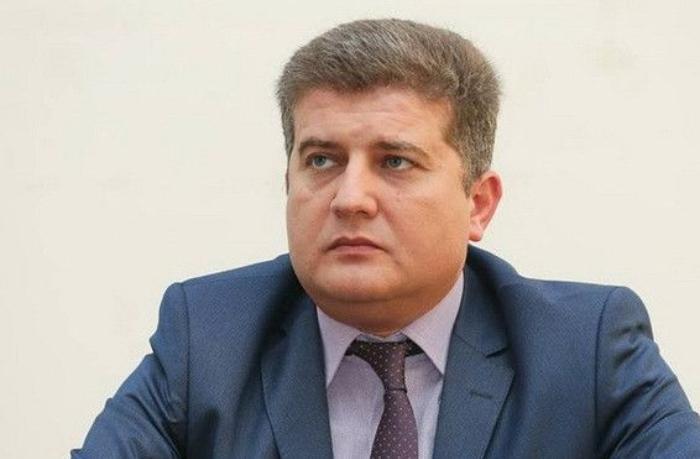 Erkin Qədirli AŞPA-da Navalnını dəstəklədi
