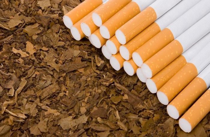 Azərbaycan tütün ixracını kəskin azaldıb