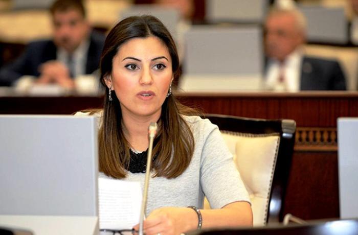 """Deputat: """"Qarabağ separatçılarının son cəhdləri əbəsdir"""""""
