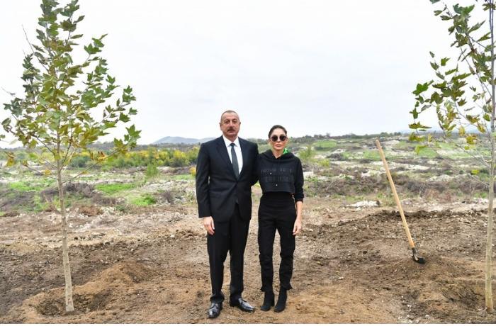 Prezident və birinci xanım Füzulidə yaradılacaq Mərkəzi Şəhər Parkında ağac əkdilər — FOTOLAR