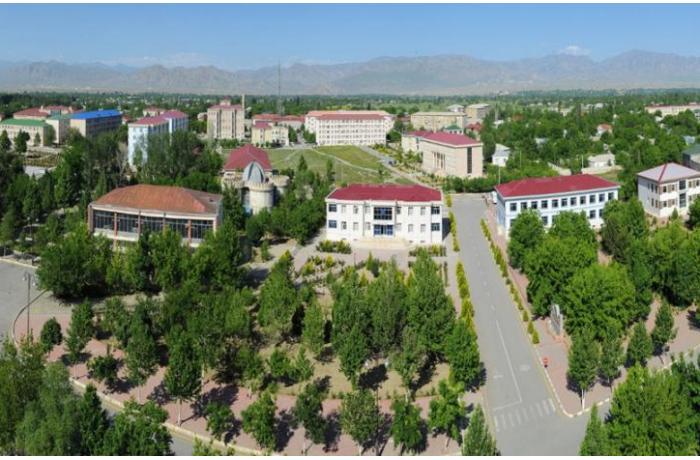 Şərurun Dəmirçi kəndi Sədərək rayonunun tabeliyinə verildi