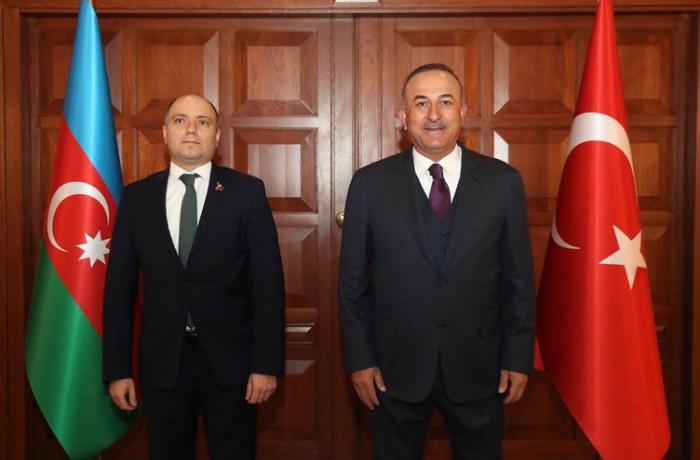 Mövlud Çavuşoğlu Anar Kərimov ilə görüşdü