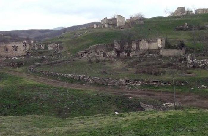 Qubadlı rayonunun Tarovlu kəndindən görüntülər — VİDEO