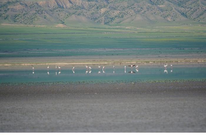 ETSN: Acınohur gölü quruyur