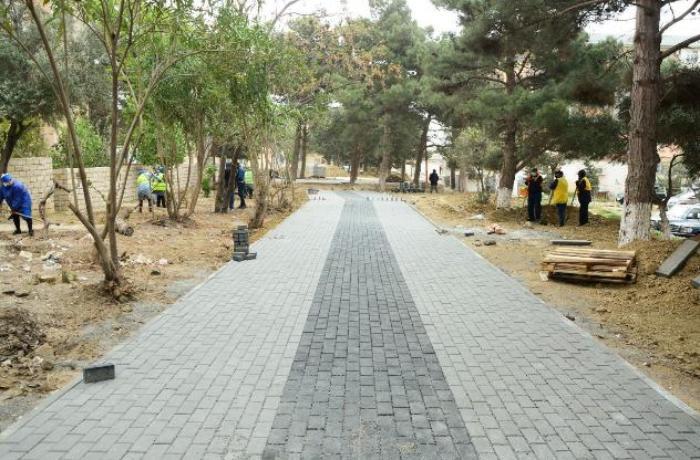 Bakıda Polad Həşimovun adına park salınır — FOTOLAR