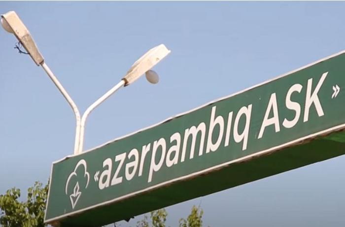 """""""Azərpambıq ASK""""nin vəzifəli şəxsinin cinayət işi məhkəməyə göndərildi"""