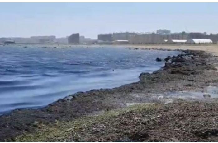 Sumqayıt bulvarında kanalizasiya qoxusundan gəzmək olmur — VİDEO