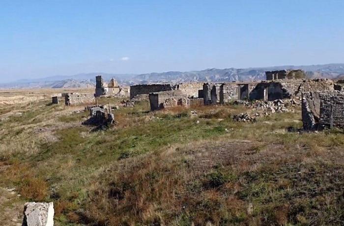 """""""Havalı – geri dönən xoşbəxtliyim..."""""""