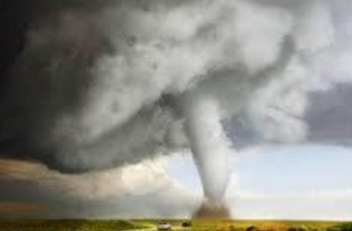 Yeni Zelandiyada tornado bir nəfərin həyatına son qoydu