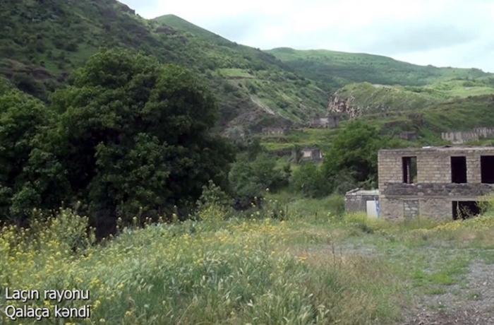 Laçının Qalaça kəndindən görüntülər — VİDEO