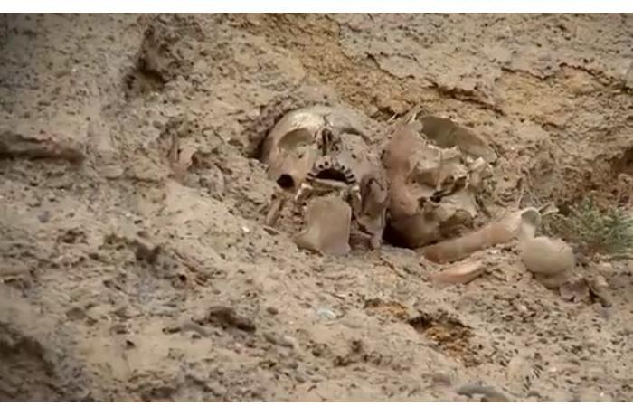 Qanlıgöl ətrafında üç insanın kəllə sümüyü tapıldı — VİDEO